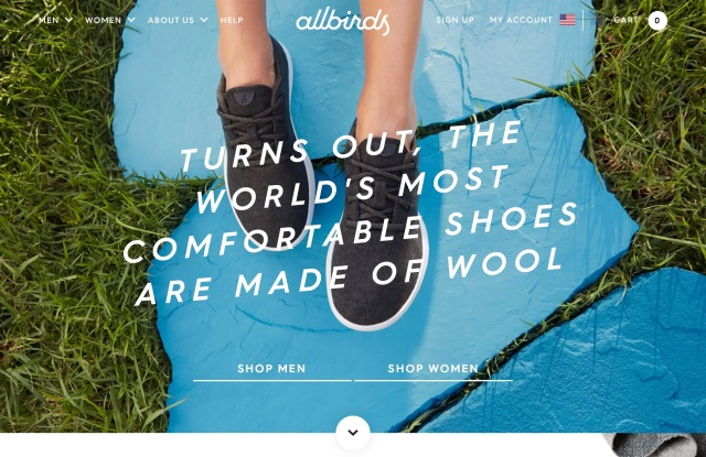 Stitch Fix, Allbirds and the Break-Out Hits in the Fashion Industry